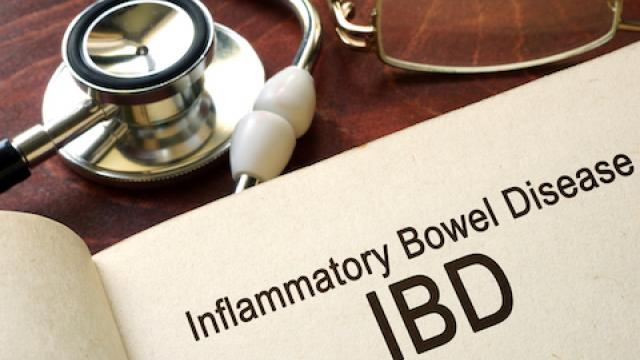 Research offers hope of future treatments for sufferers of Inflammatory Bowel Disease